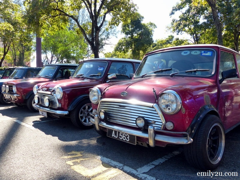 8. a row of Minis