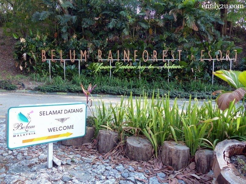 1. Belum Rainforest Resort, Pulau Banding, Perak