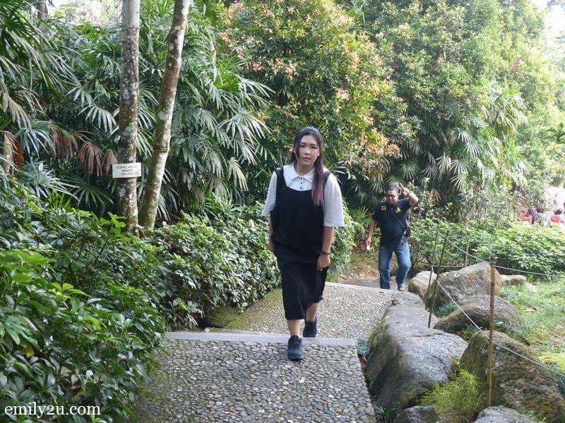 1/ trek up Japanese Village