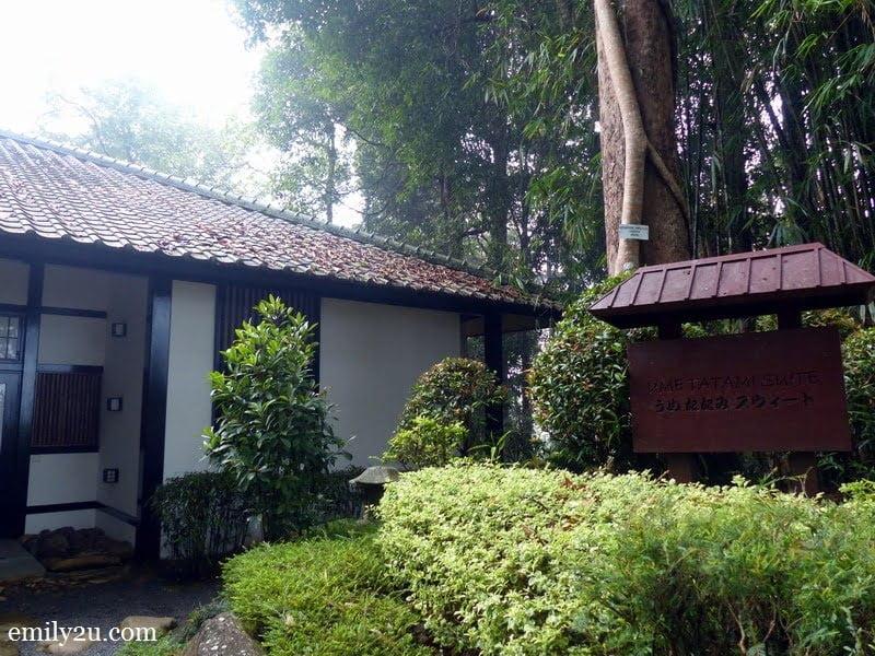 12. Ume Tatami Suite