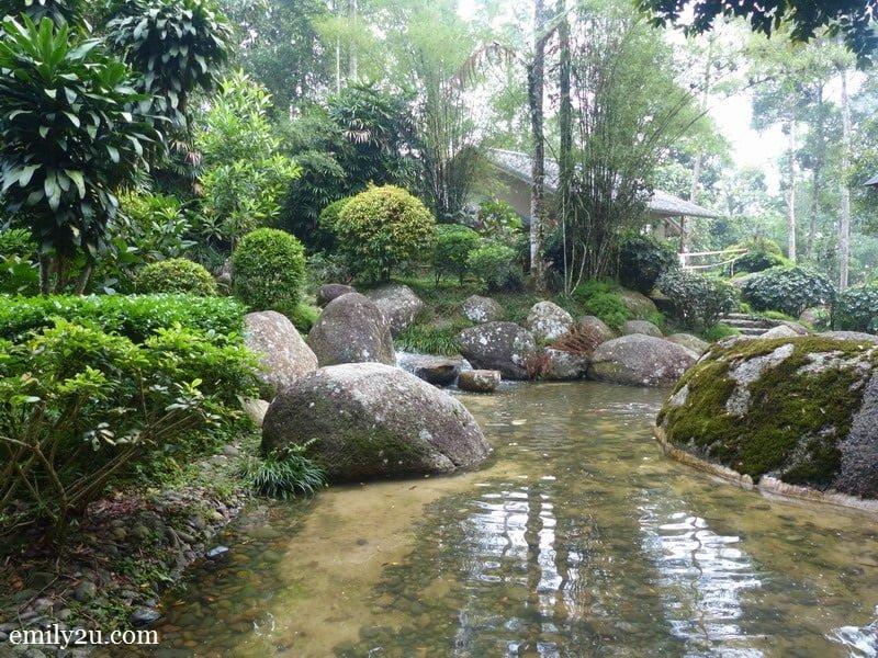 5. calm pond