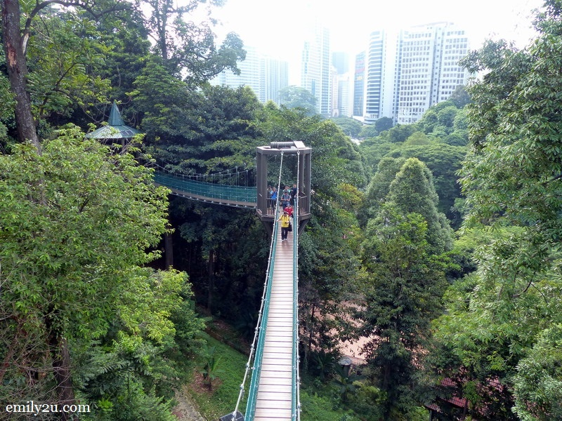 KL Forest Eco-Park canopy walk & Latest Attractions at KL Tower | From Emily To You