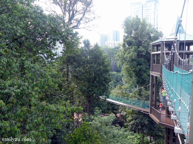 11. KL Forest Eco-Park canopy walk