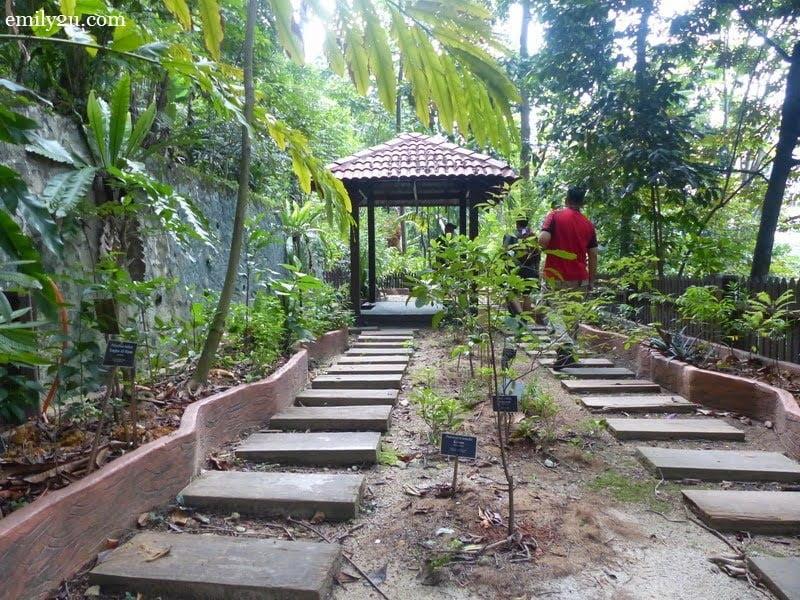 7. Herbal Garden