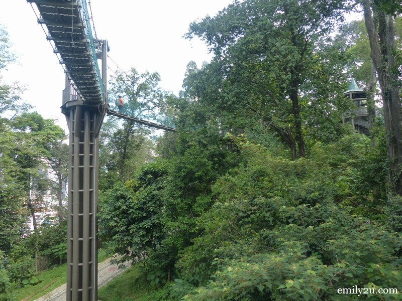 9. KL Forest Eco-Park canopy walk