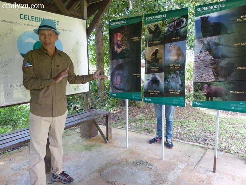 1. our guide Eddie Chan gives a briefing on the supermodels of the forest that we may encounter
