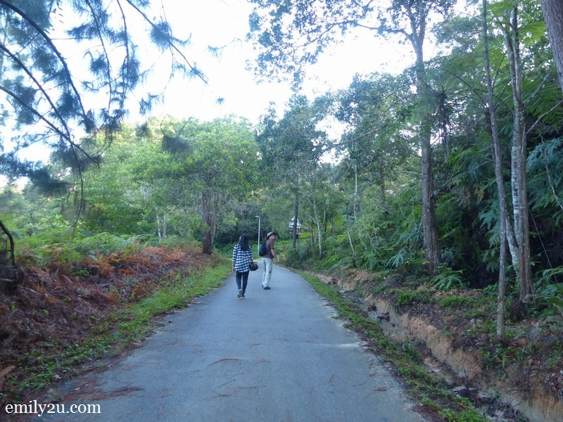 1. Malaysian Nature Society (MNS) President Henry Goh leads the way in search of birds