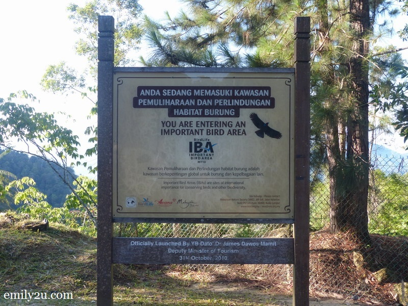 2. an Important Bird Area (IBA) - one of the only 55 in Malaysia