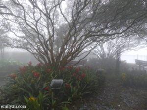 3. Old English Garden