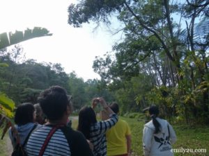 birdwatching Genting Highlands