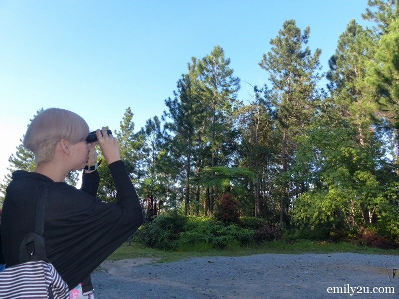 5. Reiko gets a better look at the birds with a binoculars