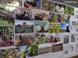 15-perak-farmers-organisation-media-award-night
