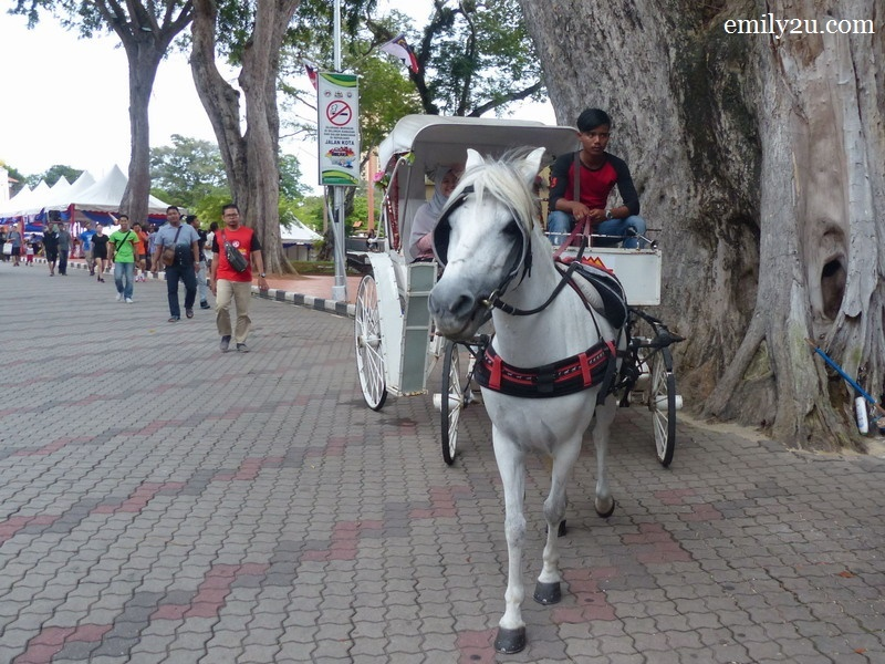 10. horse carriage rides are one of the attractions in the area