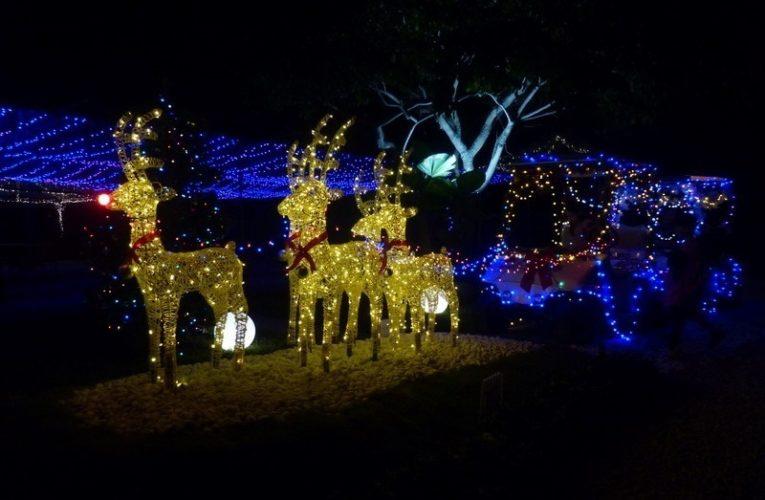 Field of Lights – Celebrating 15 Years of Bandar Baru Sri Klebang Township