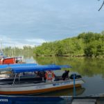 Mangrove River Cruise + Sky Mirror @ Kuala Sungai Buloh (Sasaran)