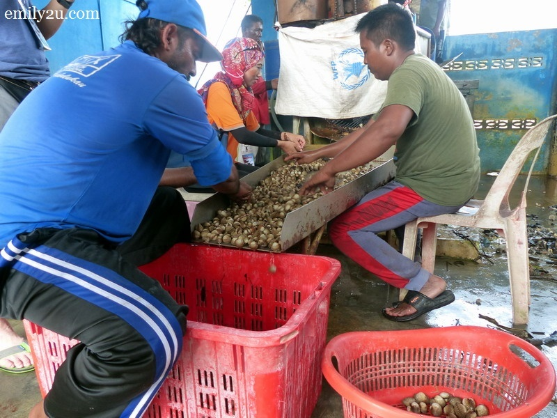13. cockles being sorted out