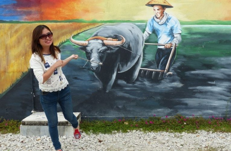 Exploring Sekinchan: 8 Attractions to Visit