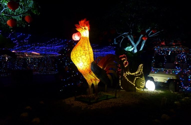 Field of Lights: Chinese New Year Edition
