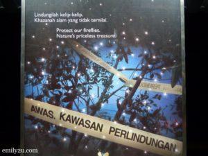 3 Kuala Selangor Fireflies Tour