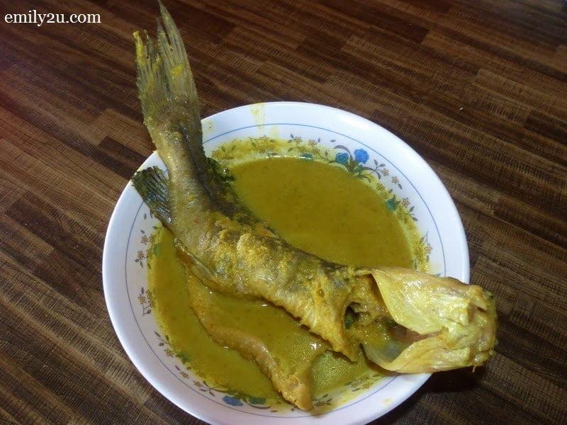 3. ikan baung