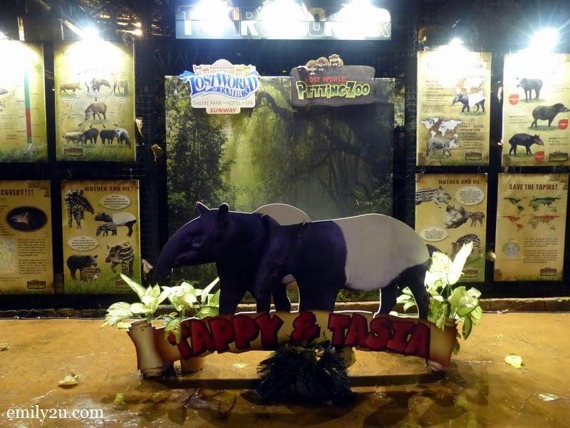4. tapir corner