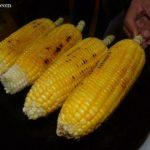 To The Corn Fields of Kuala Selangor