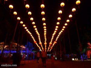 6 Field of Lights CNY