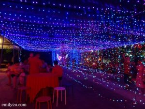 8 Field of Lights CNY
