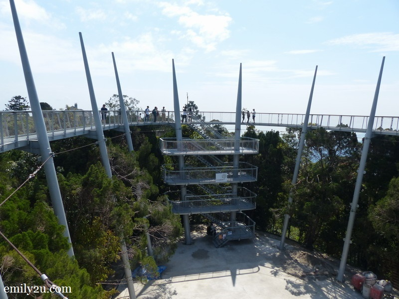 2. Curtis Crest Tree Top Walk