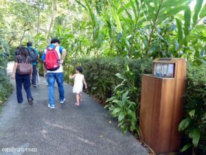 4 The Habitat Penang Hill