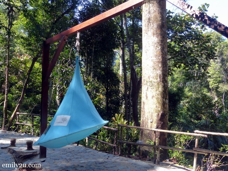 10. teardrop hammock