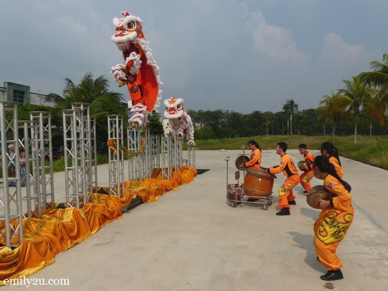 12. lion dance performers under Master Siow Ho Phiew's tutelage