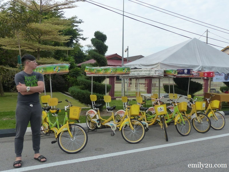 6. bicycles for rent