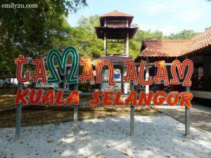 2 Kuala Selangor Nature Park Taman Alam