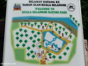 3 Kuala Selangor Nature Park Taman Alam