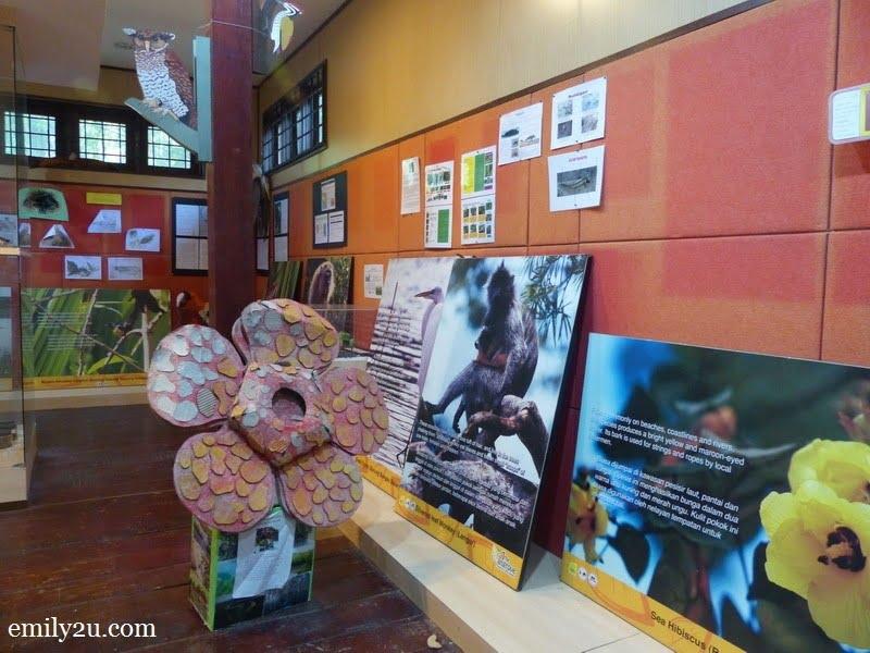 4. information gallery