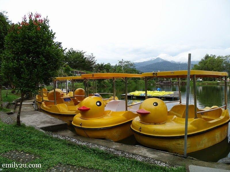 11. paddle boats