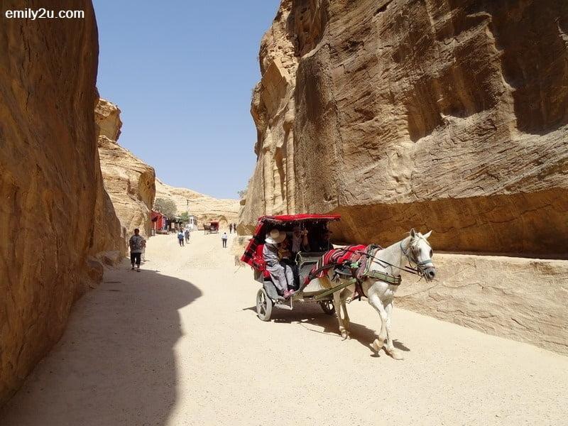 29. horse caravan