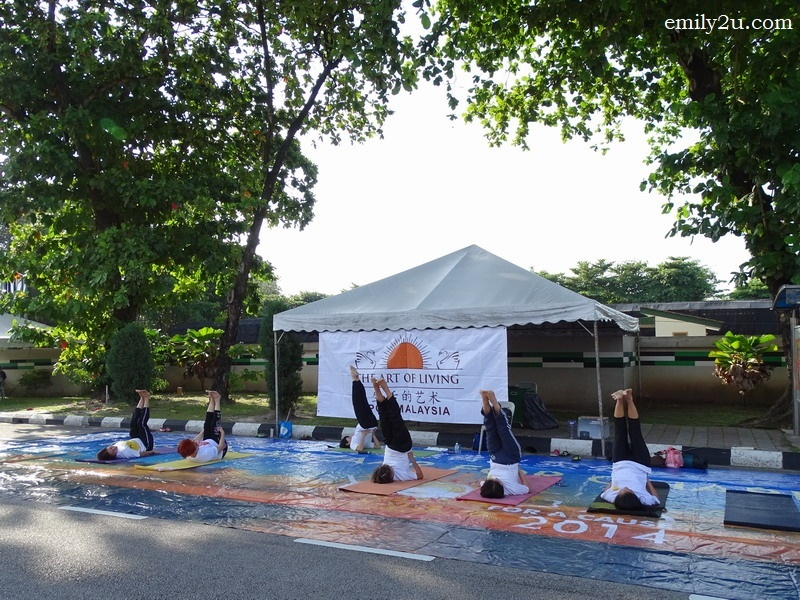 12. public yoga by The Art of Living
