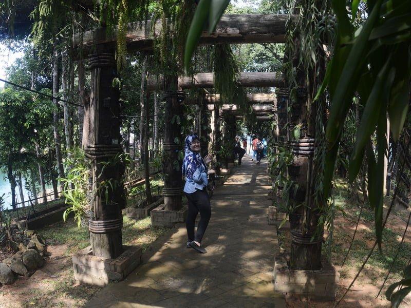 4. Orchid Garden