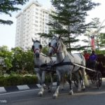 Ipoh Car Free Day: World Car-Free Day