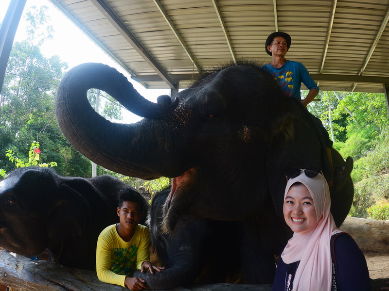 7. Kenyir Elephant Village