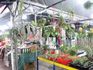 16 Pesta Orkid dan Flora
