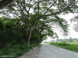 2 Taman Alam Kinta