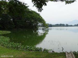 8 Taman Alam Kinta