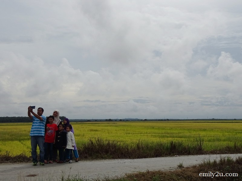1. a family stops to take a wefie with paddy field as backdrop