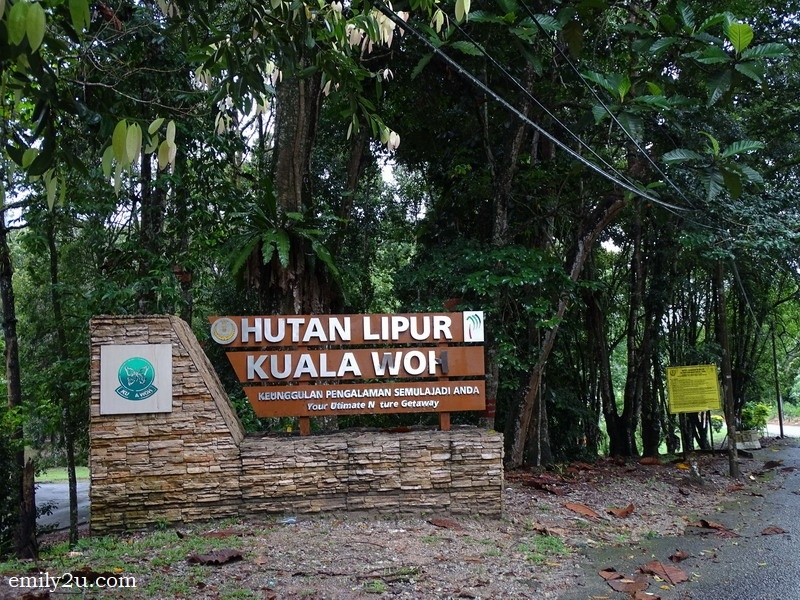 1. heading to Kuala Woh Recreational Forest