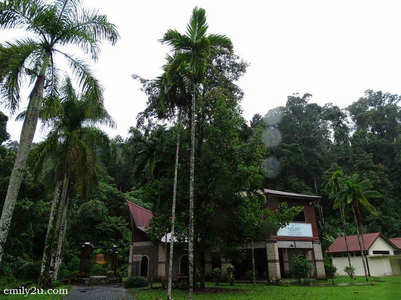15. Forestry Gallery - Kuala Woh Amenity Forest