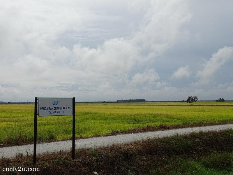 4. Pengairan Changkat Jong