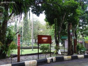 6 Kuala Woh Recreational Forest